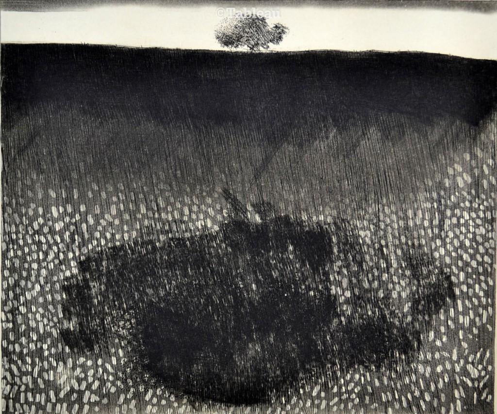 gravura de Evandro Carlos Jardim